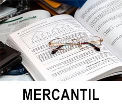 investigacion mercantil